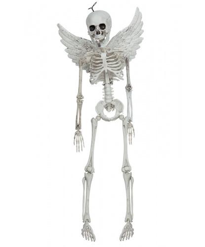 Скелет ангела
