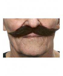 Пышные коричнево-черные усы