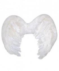 Ангельские крылья мал. (50х35)