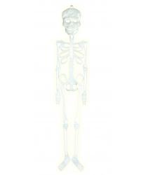 Светящийся в темноте скелет