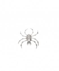 Скелет паука (15 х 20 см)