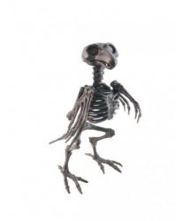 Скелет черного ворона
