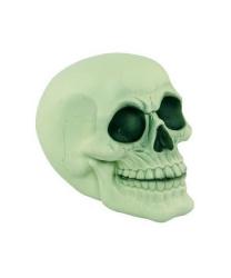 Фосфоресцентный череп (15.5 х 11 х 12.5 см)