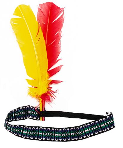 Головной убор индейца: (Германия)