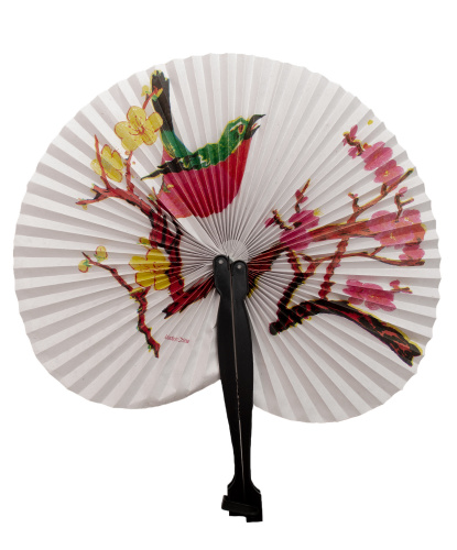 Бумажный веер (птица) (Италия)