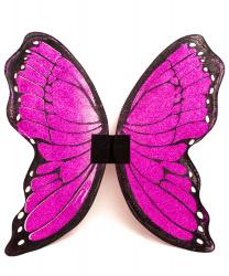 Блестящие крылья бабочки