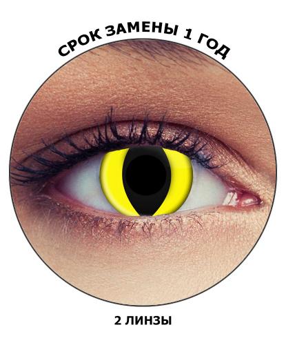 Линзы жёлтый кошачий глаз, без диоптрий, срок ношения 1 год (Великобритания)
