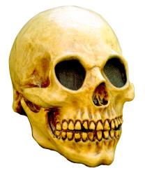 Латексная маска черепа