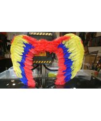 Разноцветные крылья
