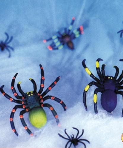 Паутина с пауками, 10 м2, 10 пауков