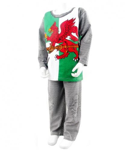 Детский костюм Уэльского рыцаря: футболка, штаны (Англия)