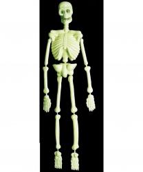 Декорация для Хэллоуина Скелет