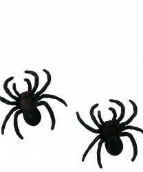 Набор из 2-х пауков (10 см)
