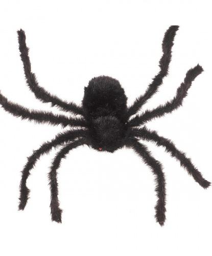 Большой мохнатый паук