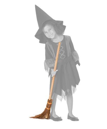 Ведьминская метла
