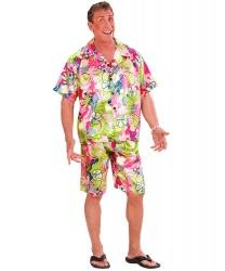 Гавайский костюм: рубашка, шорты (Италия)