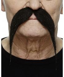 Длинные черные усы