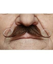Усы закрученные вверх, коричневые с проседью