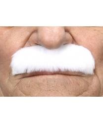 Прямые белые усы