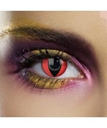 Линзы красный кошачий глаз, однодневные - Цветные линзы, арт: 7550