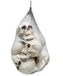 Набор из 6 черепов