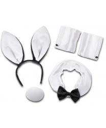 Набор кролика Playboy