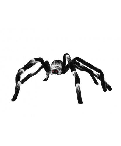 Большой паук с длинными лапками