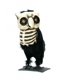 Мертвая сова - Декорации на Хэллоуин, арт: 7833
