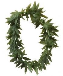 Ожерелье из зеленых листьев