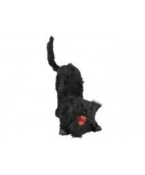Черная кошка с эффектами