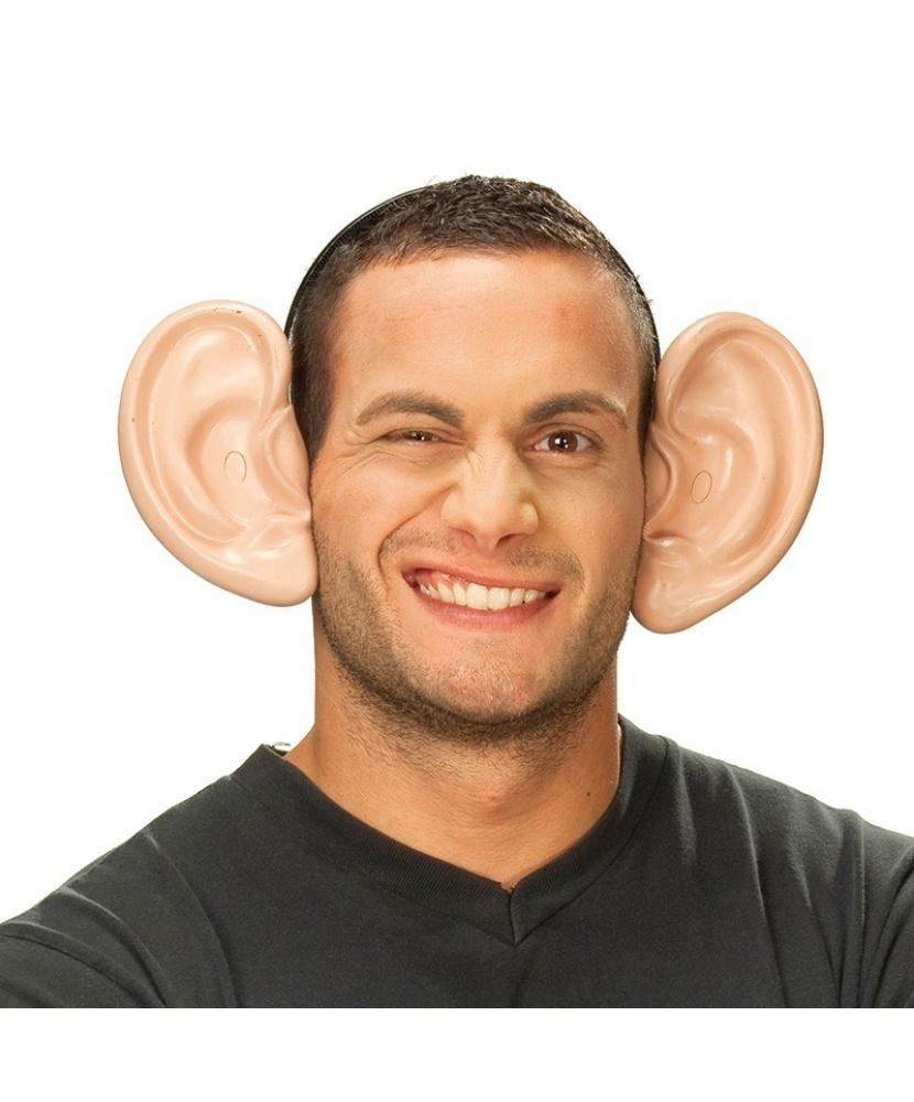 фото с самыми большими ушами примеру, дерзкий