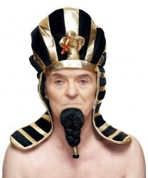 Борода фараона