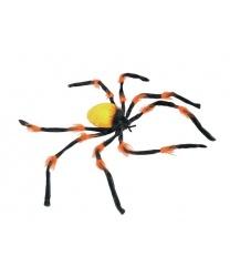Большой оранжевый паук