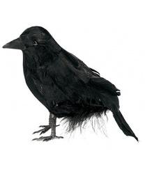 Маленький ворон - Декорации на Хэллоуин, арт: 8578