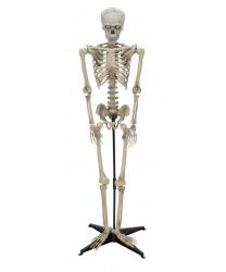 Декоративный скелет с эффектами