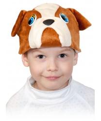 Шапочка собаки бульдога