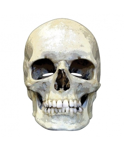Бумажная маска 2D Череп, бумага (Германия)