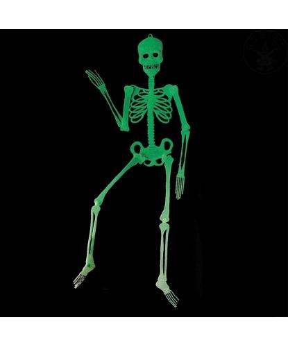 Скелет (светится в темноте)