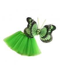 Набор зеленой бабочки