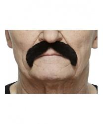 Черные усы, изогнутые вниз