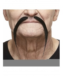 Тонкие, длинные усы