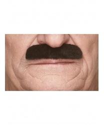 Прямые черные усы