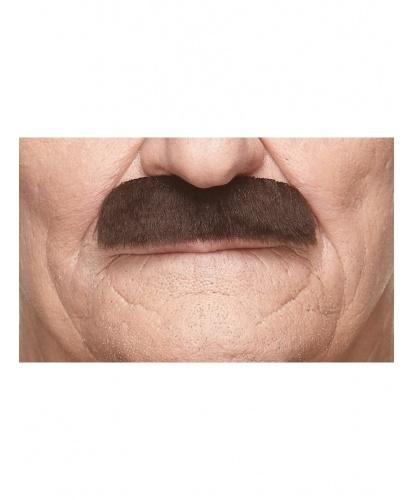 Прямые темно-коричневые усы (Литва)