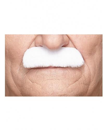 Прямые белые усы (Литва)