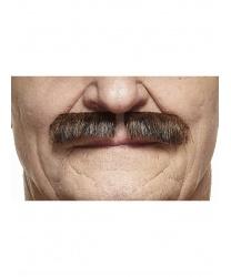 Коричнево-черные усы