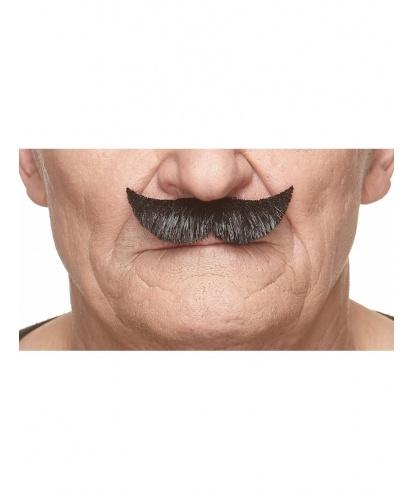 Усы джентльмена (черные) (Литва)